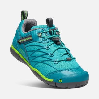 KEEN Chandler CNX tahitian tide/bright green vel.34