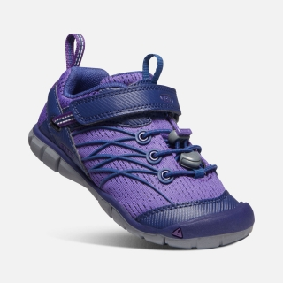 KEEN Chandler CNX royal purple vel.29